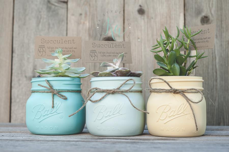 Succulent mason jars