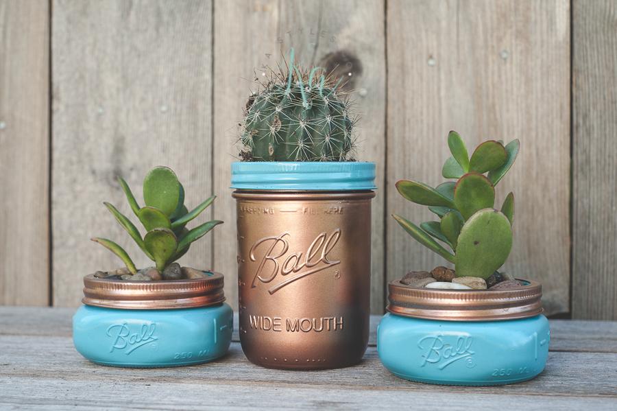 succulent-mason-jar-3