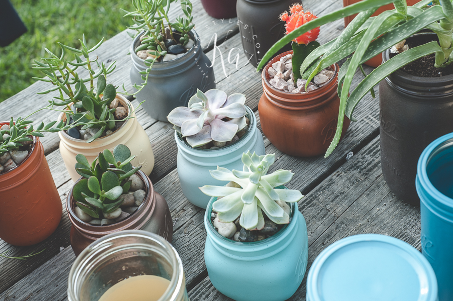 Succulent Mason Jar Planters or Herb Garden