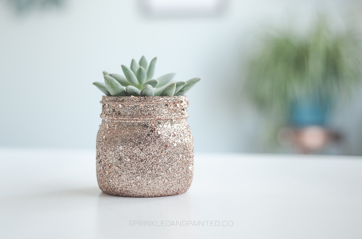 Rose gold succulent pot, mini plant pot planter.